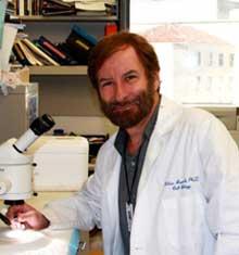 Milan Jamrich, PhD, Baylor College of Medicine